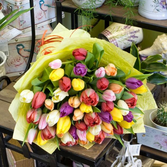 Букет из разноцветных тюльпанов (51 тюльпан)