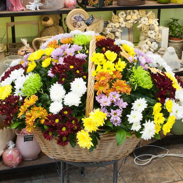 """Корзина цветов """"Разноцветные хризантемы"""""""